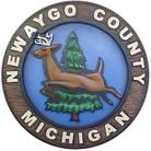 Newaygo County Emergency Services