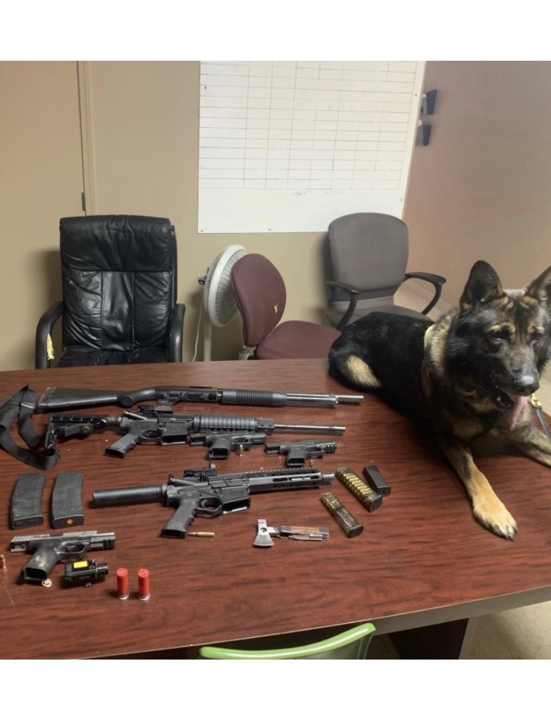 "K-9 ""Echo"" locates several weapons while conducting an article search."